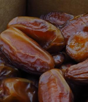 以色列椰棗 1箱10kg
